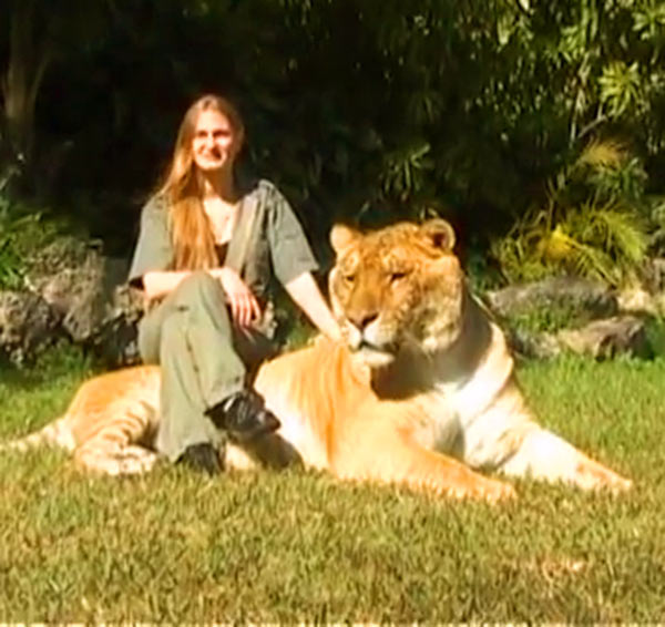 Guinness World Records 2006 - China York and Hercules the liger both appeared within Guinness Book of World Records.