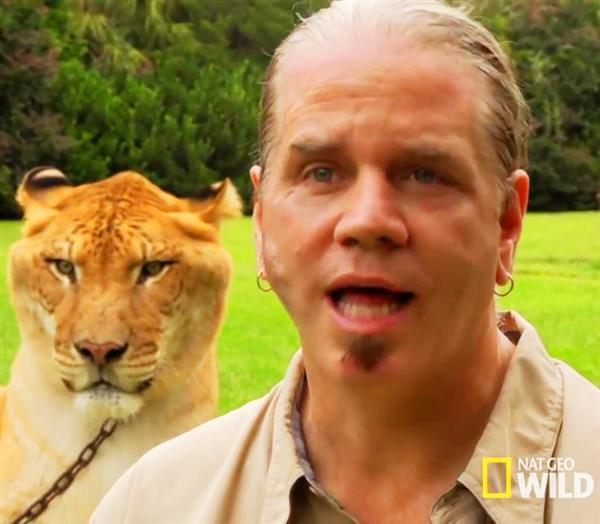 Liger Hercules National Geographic along with Dr. Bhagavan Antle.